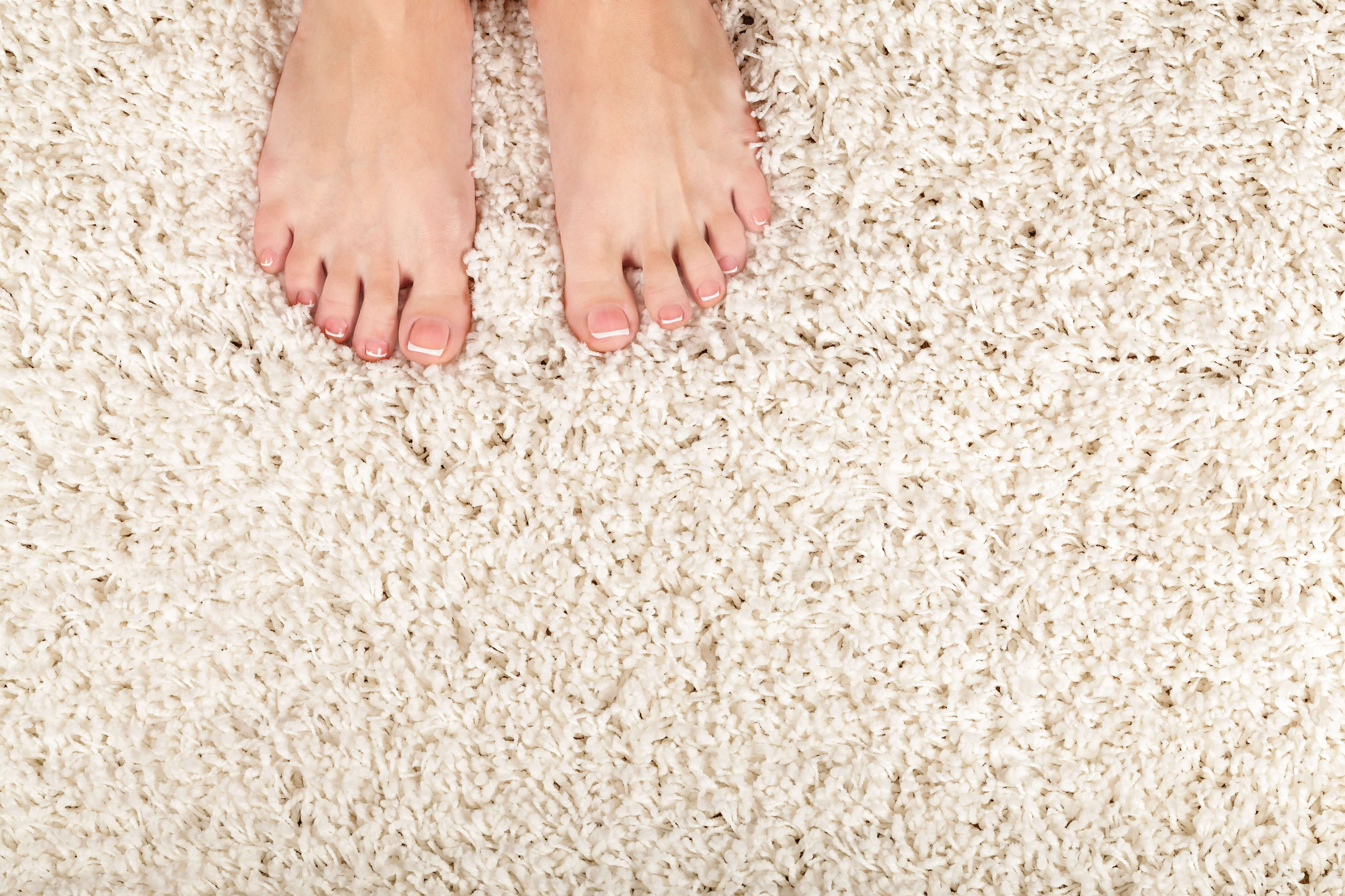 carpet cleaners vancouver